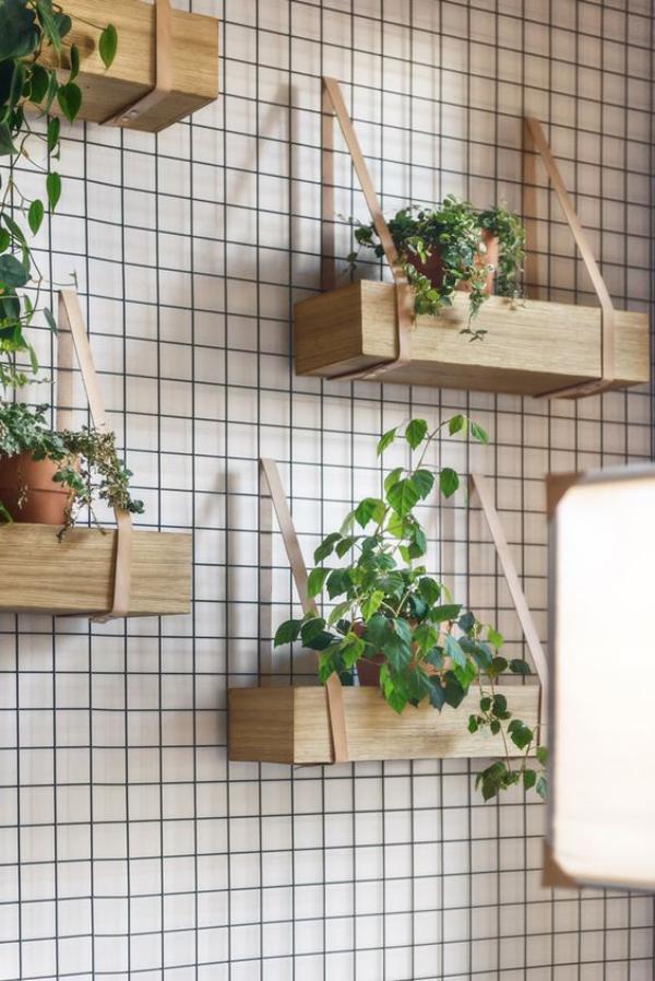 Leere Wand zum Hingucker machen grüne Zimmerpflanzen in hängenden Blumenkästen