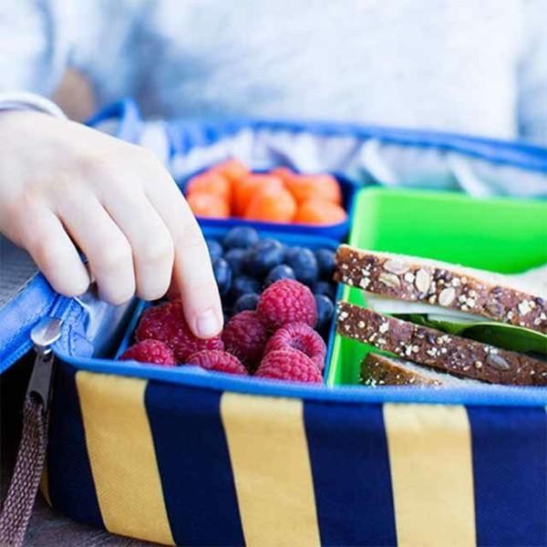 Lunchbox mit Fächern Kindergarten Mittagsbox