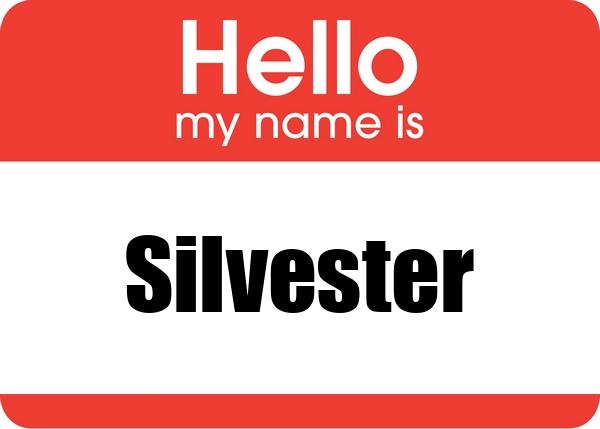 Woher stammt der Name Silvester