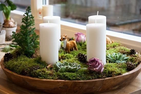 adventskranz dekorieren mit sukkulenten und moos