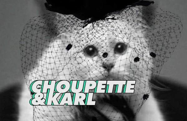 choupette katze von karl lagerfeld mode trends