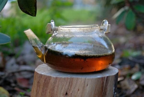 Guayusa Tee zubereiten Tipps Kanne Tee