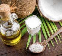 Was hat die Kokosnussmilch zu bieten? – Wissenswertes über Kokosmilch