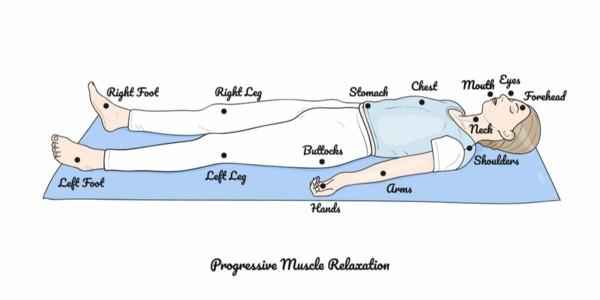 Progressive Muskelentspannung nach Jacobson Muskelgruppen