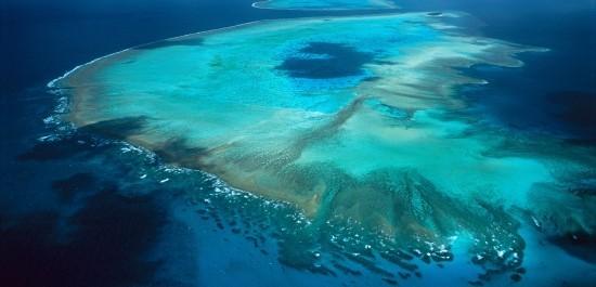 Unterwasserlautsprecher könnten zur Wiederherstellung beschädigter Korallenriffe beitragen great barrier reef wird kleiner