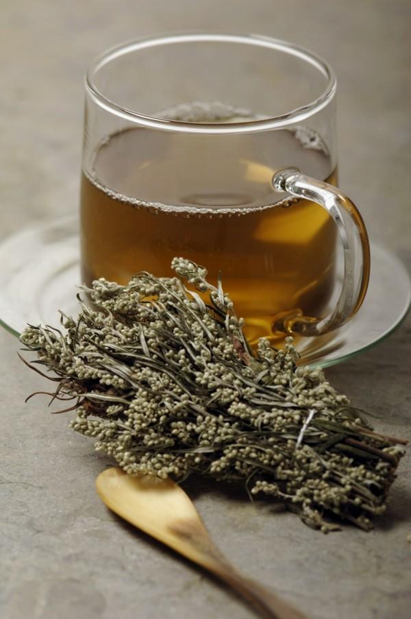 beifuß tee gesund