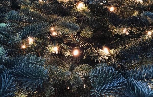 led lichterketten nachhaltige weihnachten