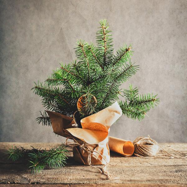 nachhaltige weihnachten 7 tipps die wahre. Black Bedroom Furniture Sets. Home Design Ideas