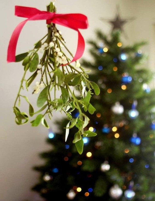 schöne weihnachtsdeko ideen mit mistelzweig