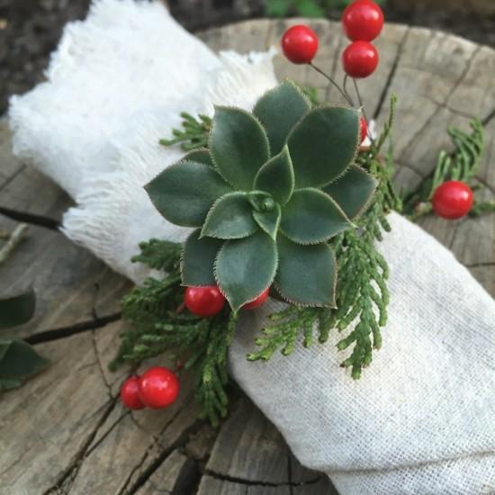 serviettenringe aus tannengrün und sukkulenten