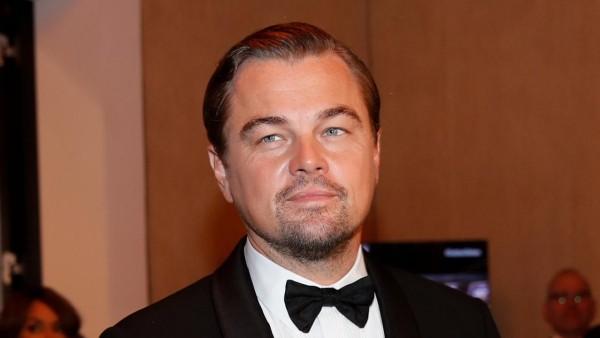 Ein Porträtbild - Leonardo diCaprio