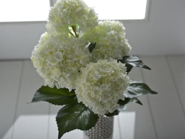 Hortensien schneiden Deko Ideen Wohnideen