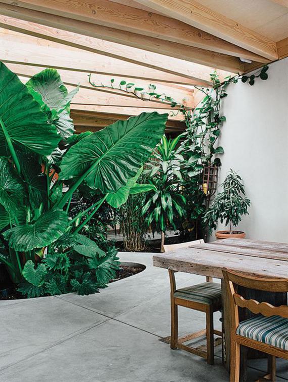 Innenhof stilvoll gestalten Entspannungsoase Ess-und Sitzbereich draußen zu jeder Jahreszeit viel Grün und Natur um sich herum genießen