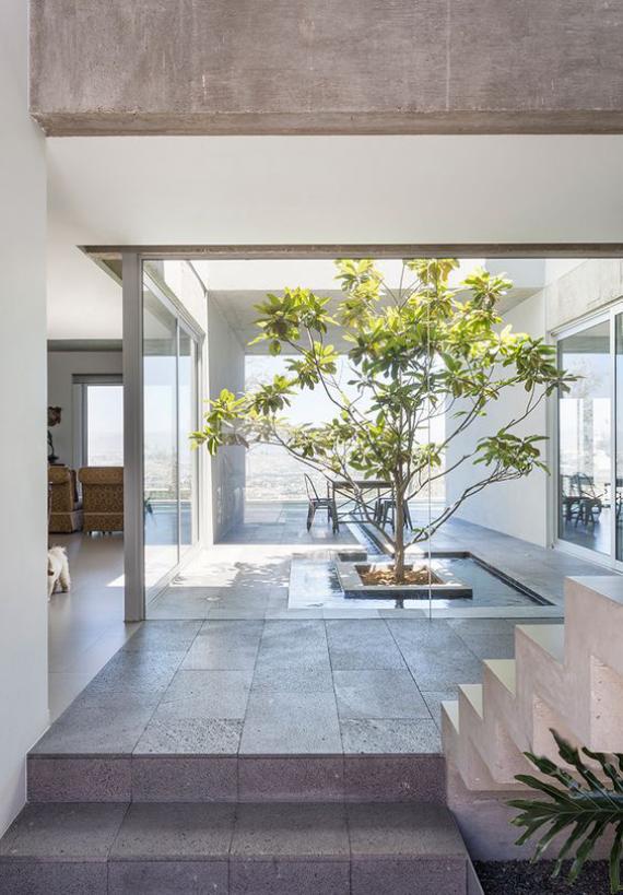 Innenhof stilvoll gestalten ein Baum viel Stein Beton Minimalismus nach japanischer Art