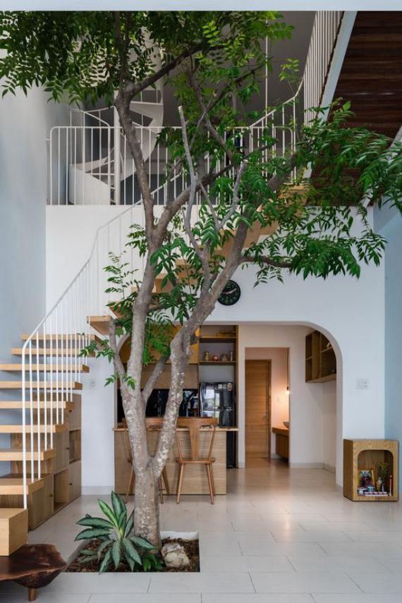 Innenhof stilvoll gestalten ein Stück Natur keine Grenze zwischen drinnen und draußen