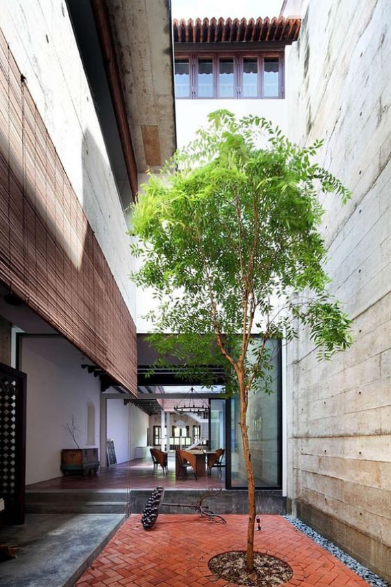 Innenhof stilvoll gestalten ein einziger Baum führt grüne Note ein