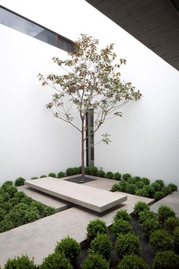 Innenhof stilvoll gestalten skandinavisches Design trifft auf japanische Eleganz Betonplatten ein Baum