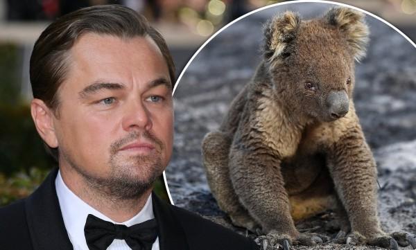 Leonardo diCaprio - Rettung von Tieren