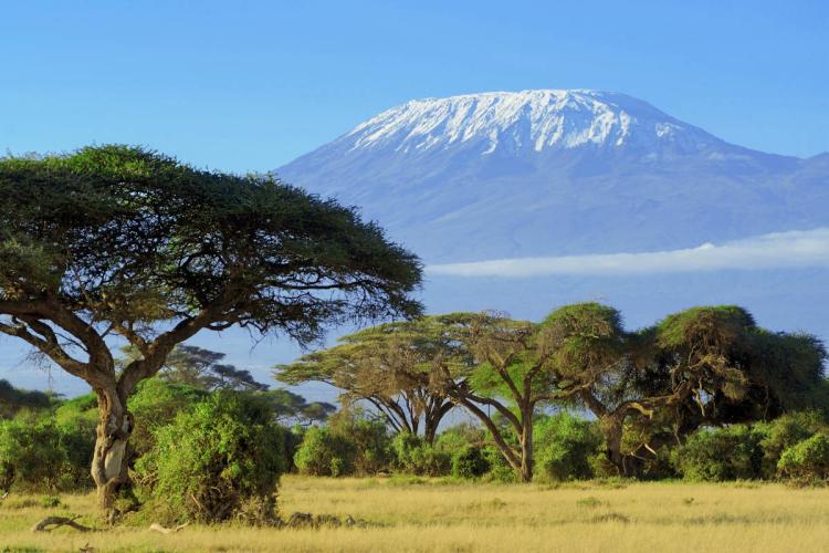 Reiseziele 2020 Kilimandscharo im Schnee Reise zum Dach Afrikas