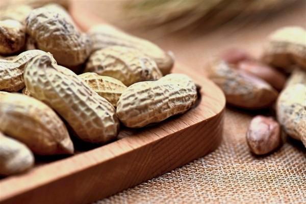 erdnüsse gesund nährwerte und kalorien