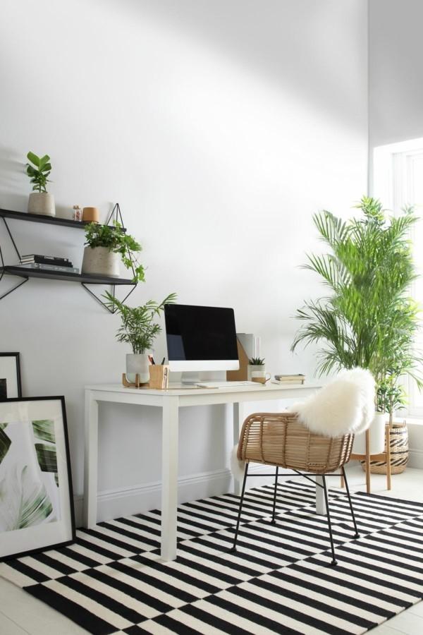 home office einrichten mit büropflanzen