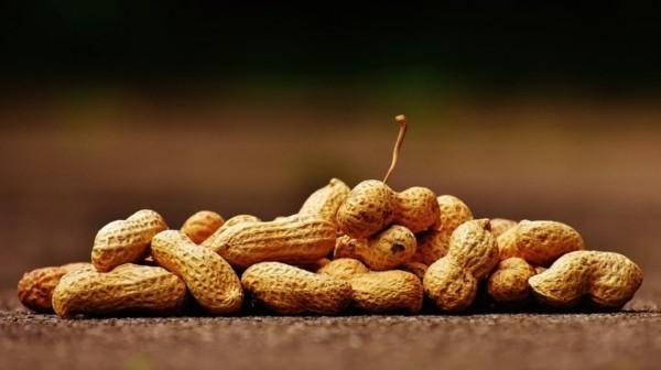 naturbelassene erdnüsse gesund essen