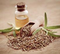 Rosmarinöl – Wirkung, Anwendung und Rezept