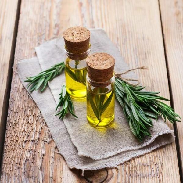 rosmarinöl wirkung und anwendung