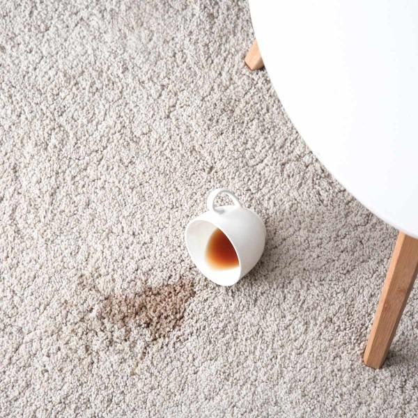 wohnideen kaffeflecken entfernen haushaltstipps
