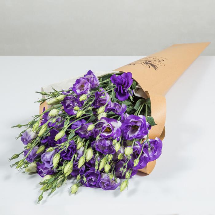 Blumen vermeiden zarte Veilchen nicht passend als Geschenk zum Valentinstag symbolisieren Zurückhaltung