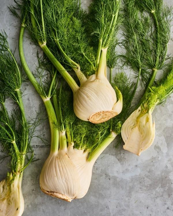 Fenchel Pflanze Fenchelsalat zubereiten Rezept