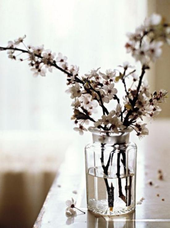 Frühlingsdeko mit Kirschblüten zwei drei dünne Zweige weiße Blüten im Glas