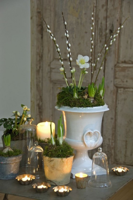 Frühlingsdeko mit Moos deko ideen