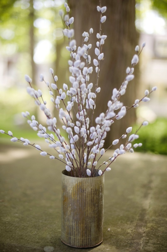 Frühlingsdeko mit Weidenkätzchen in Vase nicht wild pflücken stehen unter Naturschutz