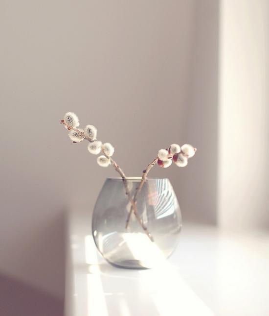 Kinderleicht und effektvoll – Frühlingtsdeko mit Weidenkätzchen in der Vase