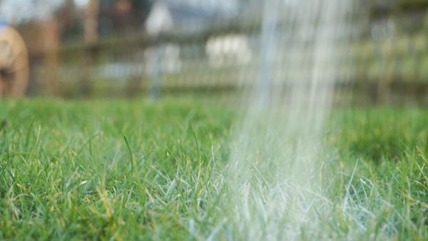 Mit Wasser anreichern Rasen düngen