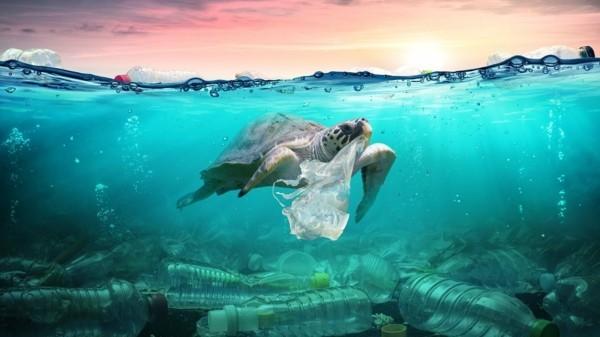 Plastikfrei einkaufen wiederverwendbare Beutel Plastikmüll Weltozean