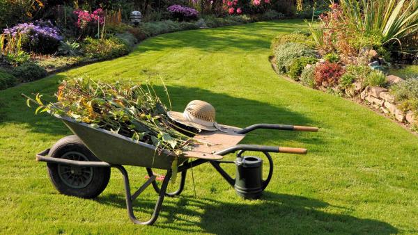 Rasen düngen Werkzeuge und Ideen