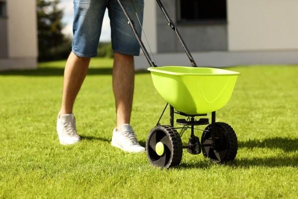 Rasen düngen als Freizeithobby