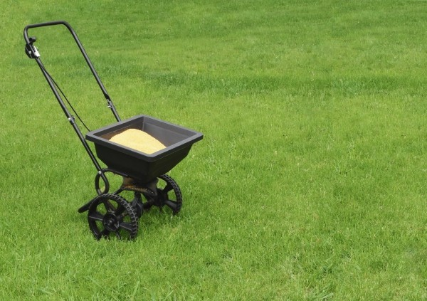 Rasen düngen richtige Mittel