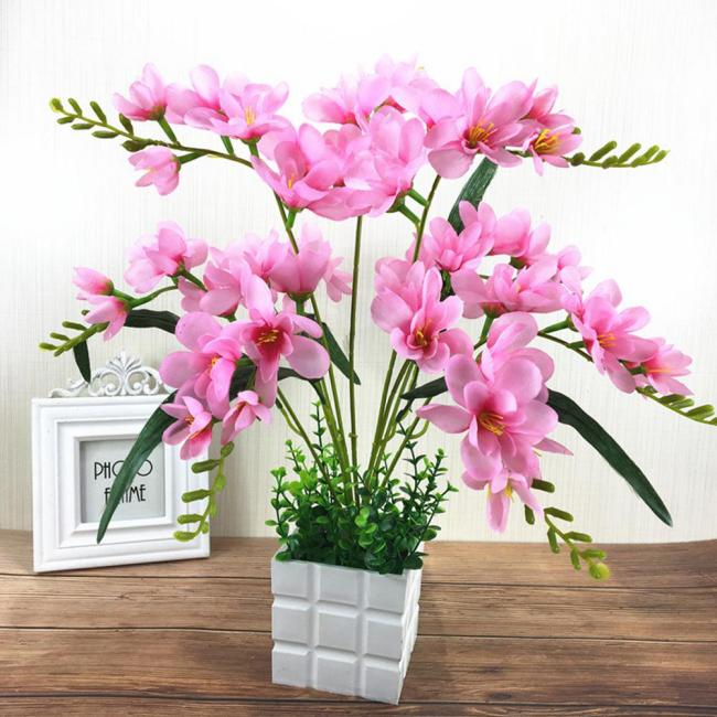 Rosa Freesien im Topf schöner Blick zarte Farben betörendes Aroma