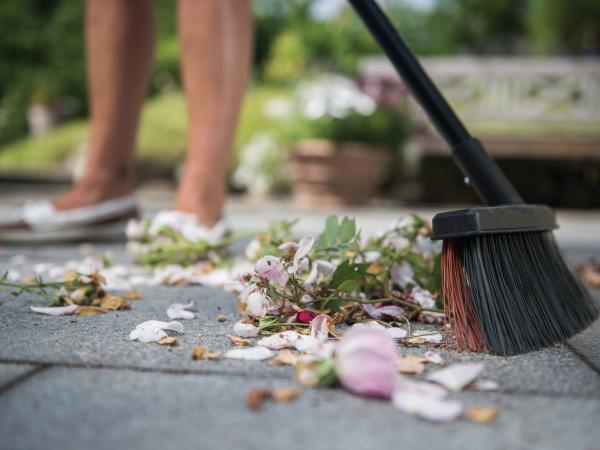 Terrassenplatten reinigen - Blumen und andere Arten von Dreck