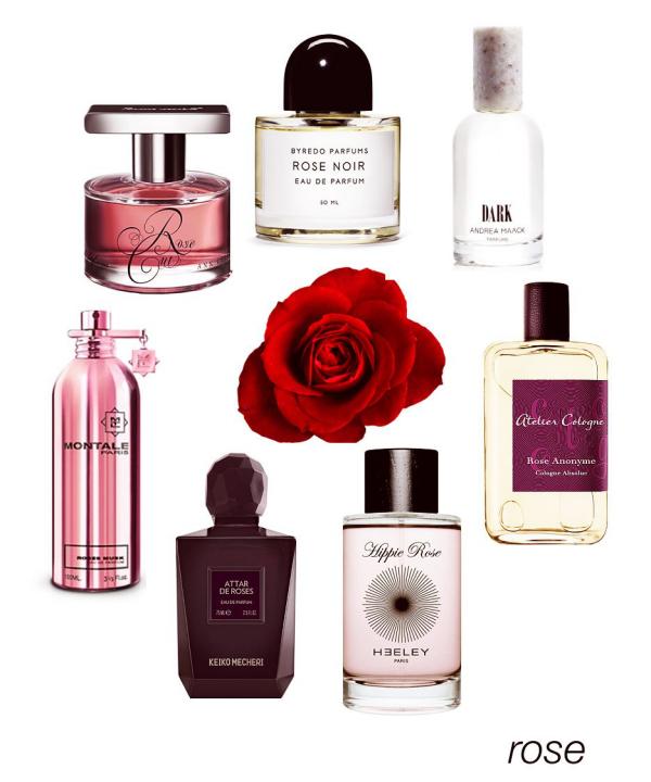 Valentinstag - eine Rose und mehrere Flaschen mit Parfüms