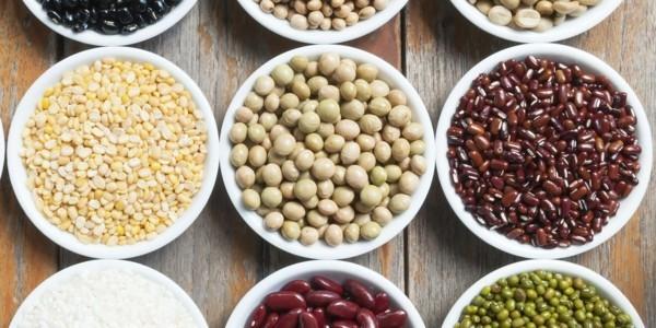 hülsenfrüchte soja vegetarische eiweißquellen
