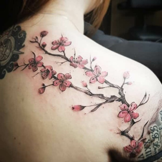 herrliche kirschblüten tattoo ideen rücken