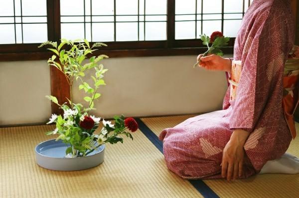 japanische blumensteckkunst chrysanthemen ikebana