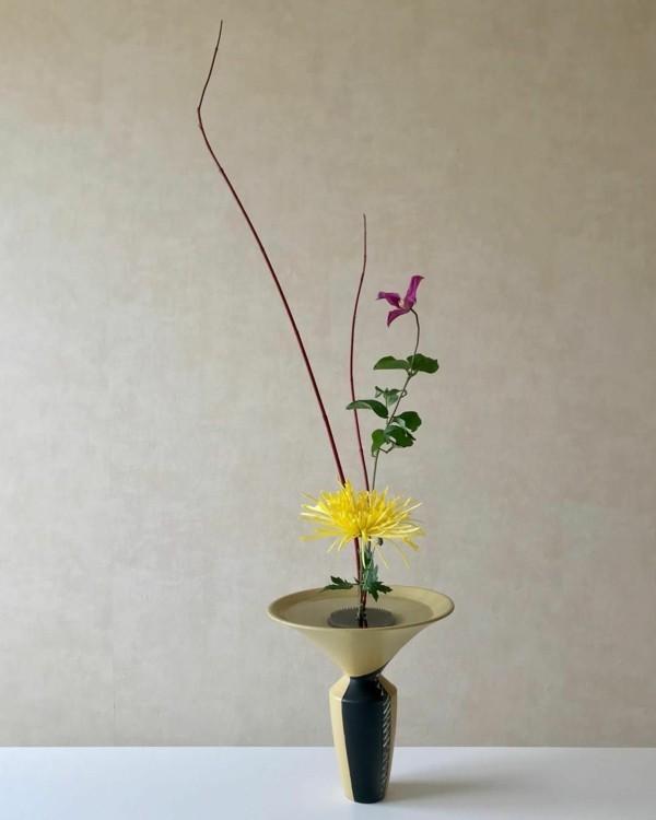 japanische blumensteckkunst ikebana gelbe chrysantheme