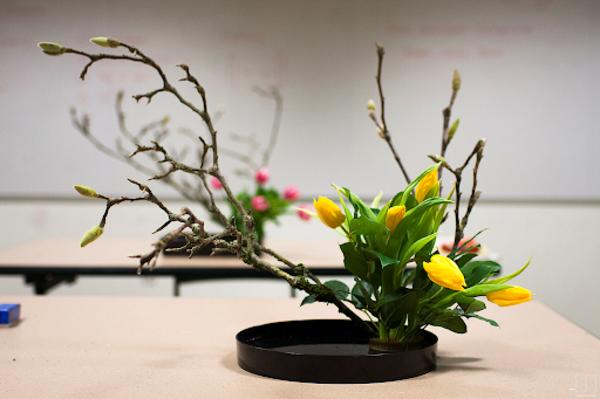 japanische blumensteckkunst ikebana magnolien gelbe tulpen