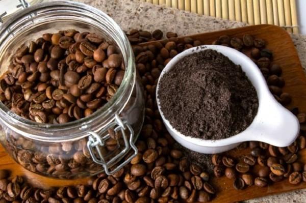 kaffeesatz als dünger tipps