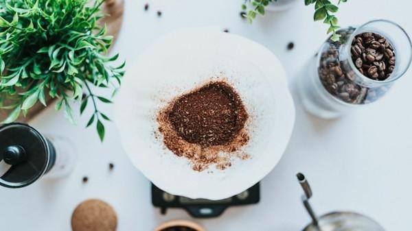 kaffeesatz als dünger vorteile